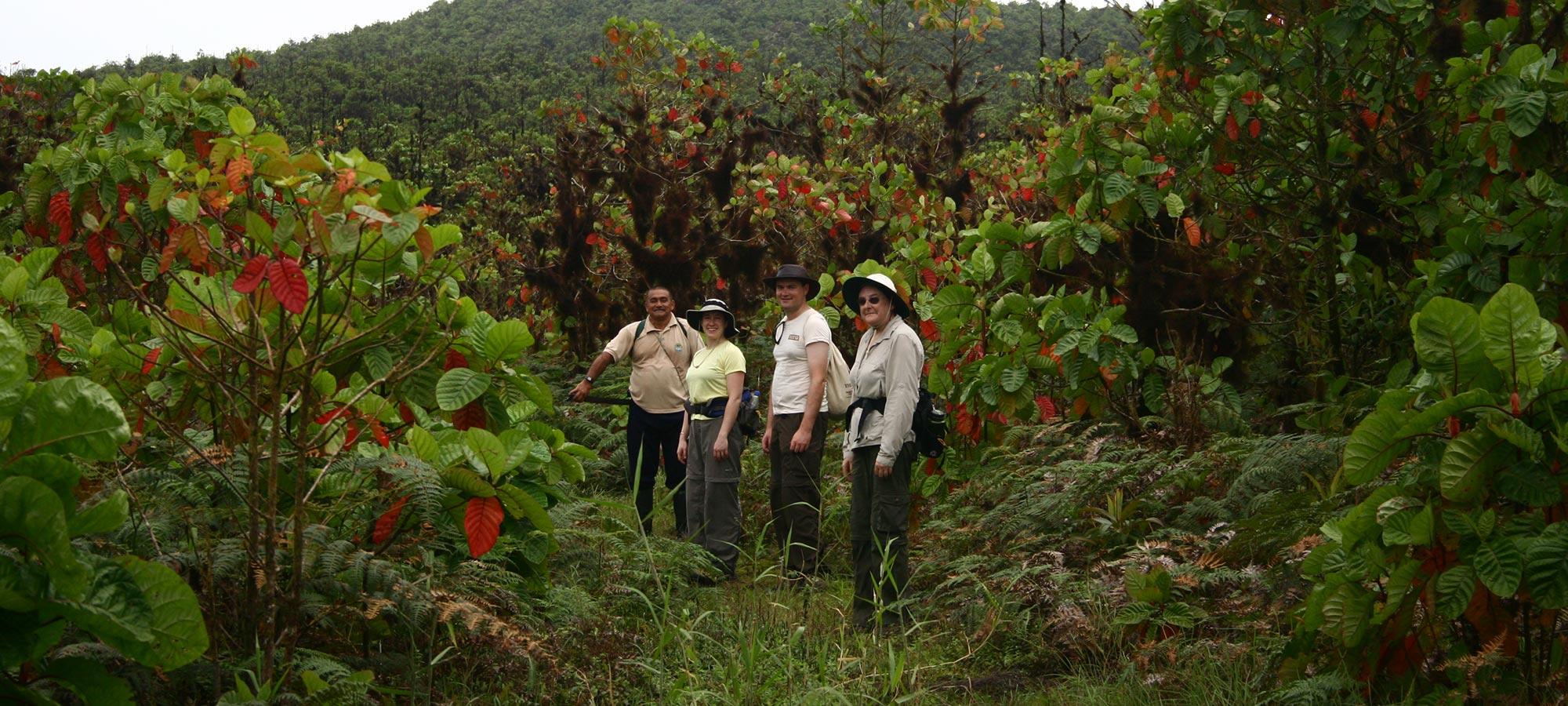 walking-tour Galapagos Walking Tour 7 Days