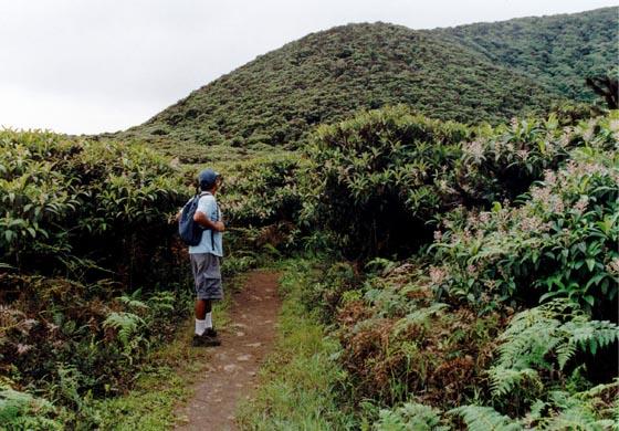 dummy Galapagos Walking Tour 7 Days