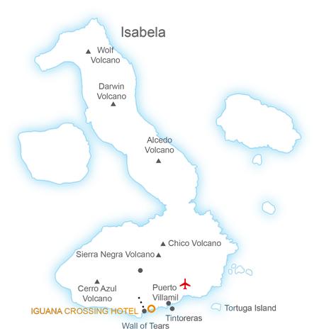 dummy Isabela Essential Journey