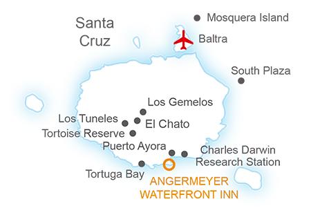 dummy Santa Cruz Essential Journey